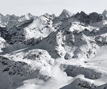 Michael Reisch, Landscape 10-006 2010